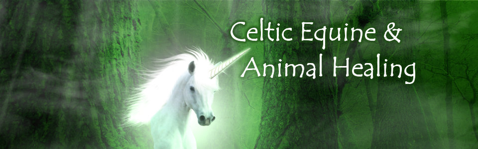 Celtic Equine & Animal Healing